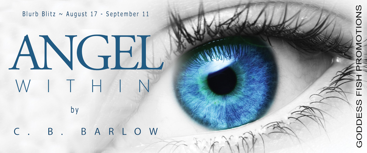 Angel Within Tour Banner