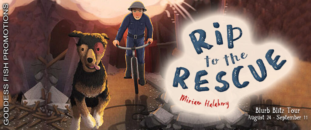 Rip to the Rescue-Tour Banner