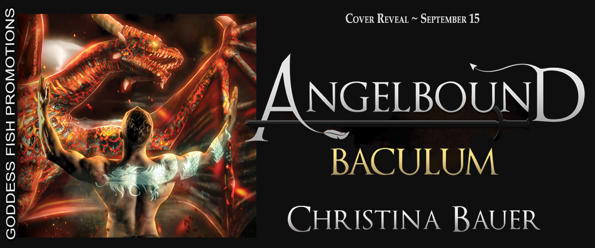 Baculum-Tour Banner