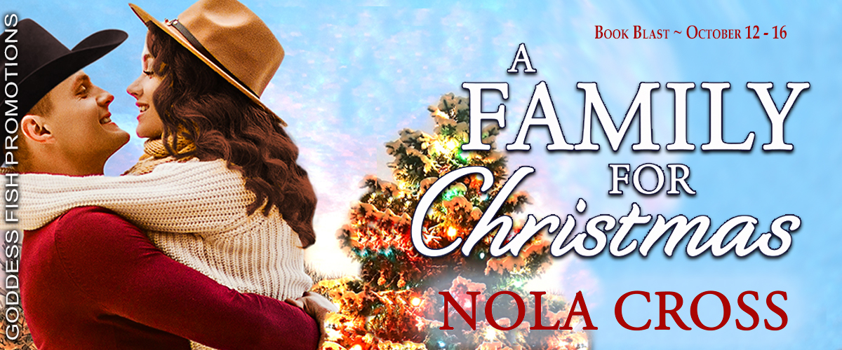 A Family for Christmas-Tour Banner