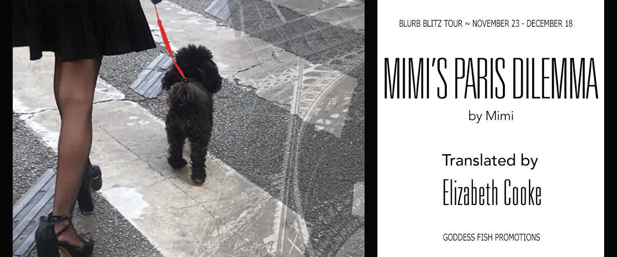 Mimi's Paris Dilemma Tour Banner