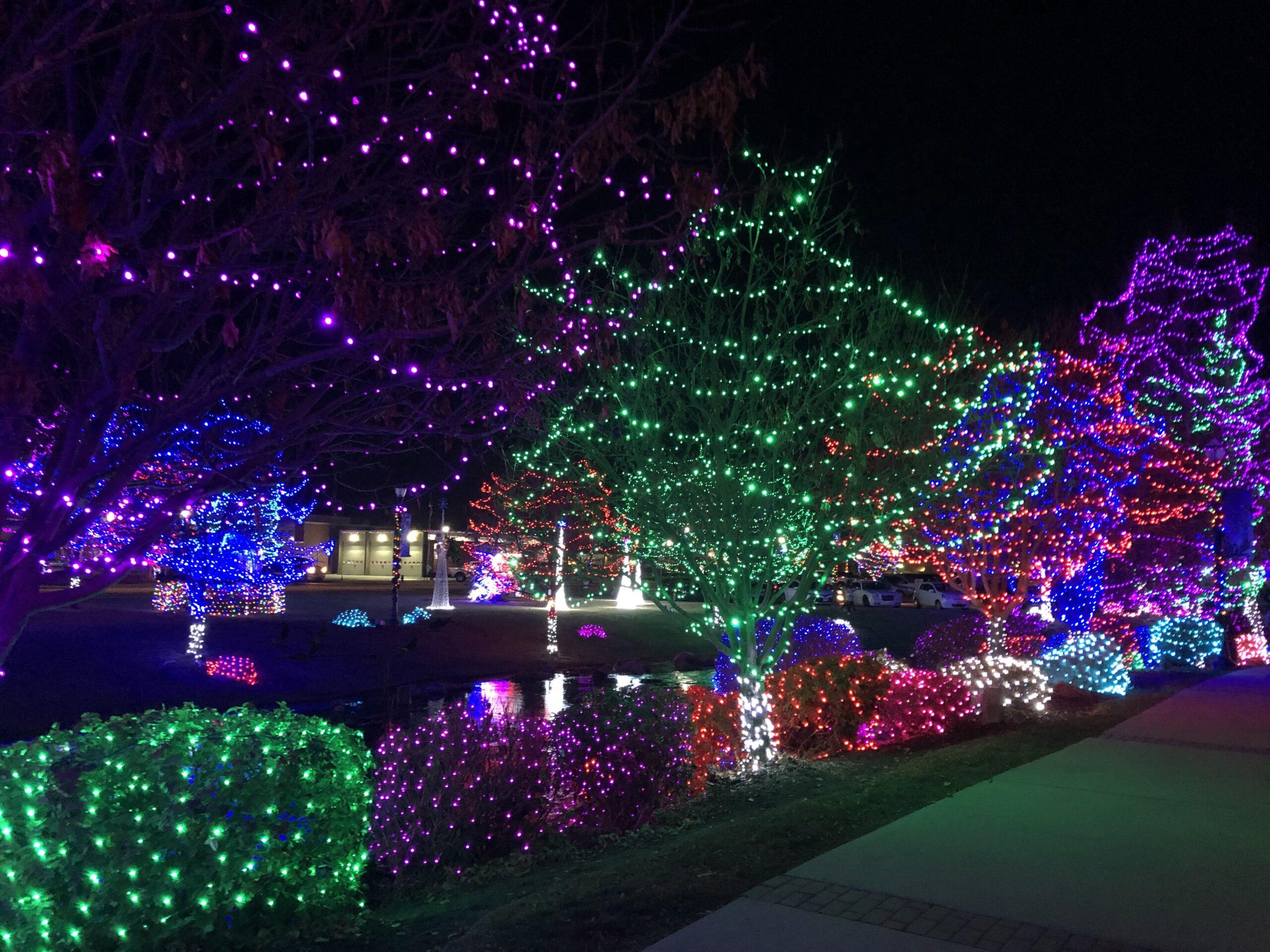 Lights trees