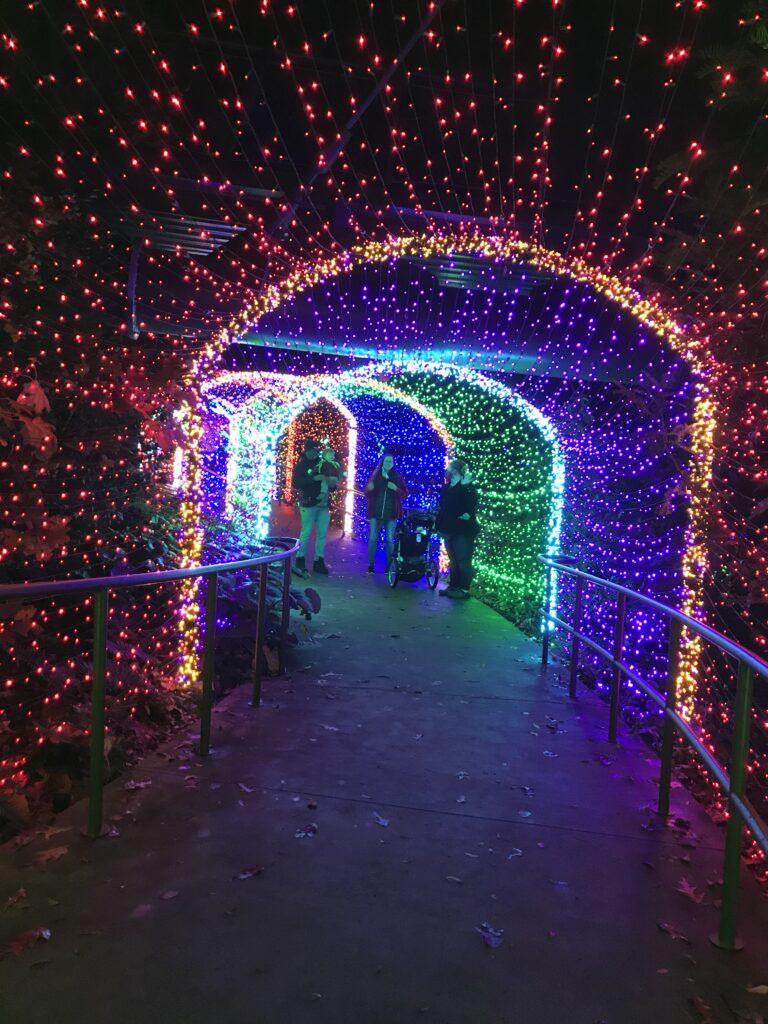 Botanical Garden Lights-3
