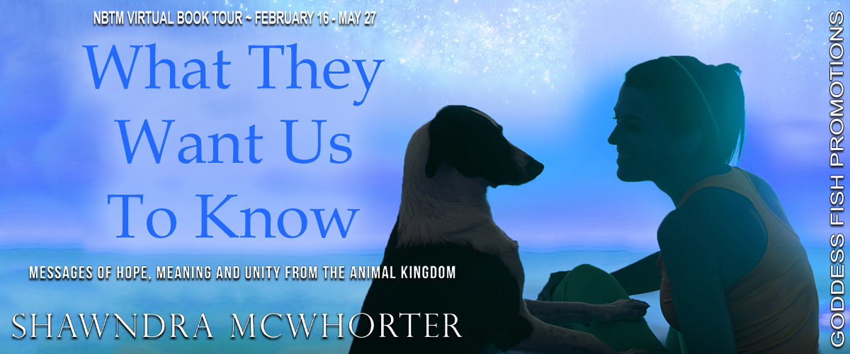 What They Want Us to Know Banner