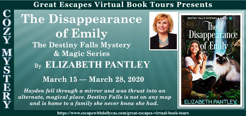The Disappearance of Emily Banner