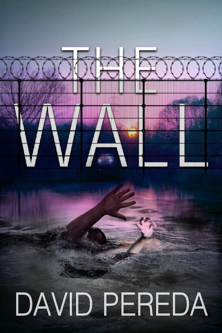 4.5 STAR REVIEW: THE WALL by David Pereda